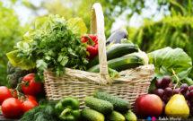 Cuchillos para verduras o vegetales