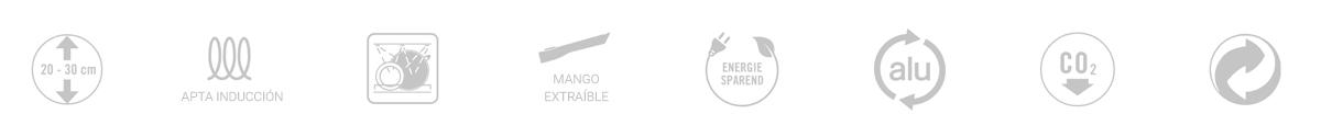Características de sartenes Woll Eco Lite